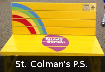 st_colmans_ps_school